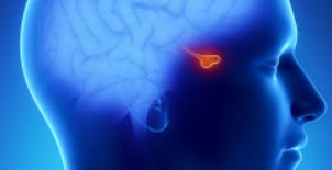 Pituitary Adenoma Treatments in Orange County by Dr. Louis
